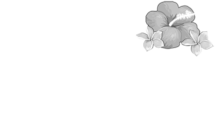 Bellavista relax